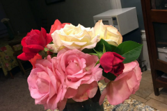 """These roses were cut as blooms and not buds, 10 days ago."" Blue Gold™ Rose gives you long lasting cuts!"