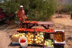 (1/7) Mid-Summer Arizona harvest!