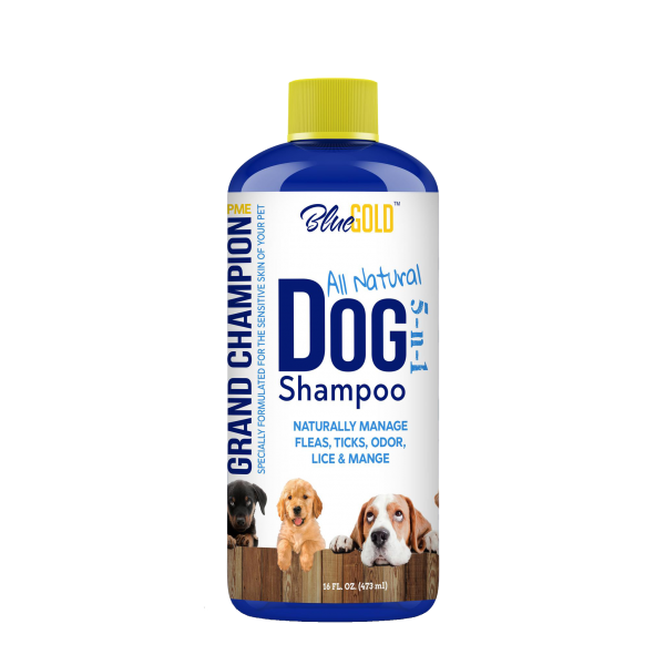 "We take pet care seriously with our Blue Gold Dog Shampoo! For optimum pet health, we recommend our dog nutritional supplement: Grand Champion. Available in two sizes on our Amazon Store page or search, ""grand champion supplement"". Our All Natural Dog Shampoo is recommended for: itchy dogs, dog skin allergies itching, pet groomer supplies, dog skin infection treatment, itchy dog treatment, itchy dog skin relief, dog eczema treatment, best dog deodorizer, dog shedding control, dog scratching relief, natural deodorizer for dog, dog deodorizer, pet care for dogs, pet care products for dogs, dog shampoo hypoallergenic, itchy dog shampoo, best dog shampoo for itchy skin, dog shampoo natural, dog shampoo for itchy skin, dog shampoo and conditioner, dog shampoo organic, dog shampoo shedding, dog shampoo tea tree, dog shampoo yeast, best dog shampoo for shedding, best dog shampoo for skin allergies, dog shampoo deshedding, dog shampoo yeast infection, best dog shampoo for dry itchy skin, dog shampoo for dry itchy skin, dog shampoo good smelling, dog shampoo skin allergies, dog shampoo smells good, best hypoallergenic dog shampoo, best natural dog shampoo, dog shampoo dry itchy skin, dog shampoo essential oil, dog shampoo odor control, best dog shampoo for smelly dogs, dog skin infection shampoo, natural dog shampoo for itchy skin, show dog shampoo, dry skin on dogs, itchy dog, dog itchy skin, dog skin allergies, dog shedding, dog rashes, dog skin conditions, dermatitis in dogs, dog scratching, dog skin infection, dog yeast skin infection, bumps on dogs skin, dog skin problems, dog skin diseases, dog eczema, dry itchy skin on dogs, dog skin allergies treatment, dog itchy skin relief, reduce dog shedding, dog fungal skin infection, itchy dog skin, itchy dog relief, itchy dog remedies, itchy dog remedy, dog hair shedding, dog yeast skin infection treatment, itchy dog treatment, dog skin infection treatment, itchy dog skin relief, itchy dog rash, dog scratching relief, MORE! all natural dog shampoo for sensitive skin, all natural dog shampoo for shedding, best dog shampoo for allergy itchy skin, fresh and soothing dog shampoo, dog shampoo, best dog shampoo, dog flea shampoo, best dog flea shampoo, flea shampoo, dog shampoo oatmeal, anti fungal dog shampoo, medicated dog shampoo, puppy shampoo, best puppy shampoo, dandruff shampoo for dogs, puppy flea shampoo, dog whitening shampoo, hypoallergenic dog shampoo, antibacterial dog shampoo, natural dog shampoo, fresh and clean dog shampoo, organic dog shampoo, dog soap, moisturizing dog shampoo, shampoo for white dogs, soap free dog shampoo, all natural dog shampoo, anti dandruff shampoo for dogs, dog dander shampoo, deodorizing dog shampoo, antibacterial soap for dogs, scabies shampoo for dogs, smelly dog shampoo, anti dander dog shampoo, soapless dog shampoo, natural puppy shampoo, soapless shampoo, show dog shampoo, flea shampoo for dogs that works, flea shampoo dogs, flea shampoo for dogs