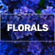 Blue Gold™ Vibrant Floral is 100% Natural/NOP Compliant blend of non-GMO herbs, mineral sources, oceanic plants/clays, plant oils/extracts. It is safe for all florals, perennials, annuals, and flowering plants, trees, shrubs, ornamentals, vines, etc.. Increased water penetration/uptake and balanced nutrition in plant sap with Blue Gold™ Vibrant Floral boosts remarkable results like longer flowering cycle, vibrant blooms, deeper explosive root growth, increased biology/worms, higher BRIXX eliminates pest and disease conditions, attracting beneficials, increased pollination, reduce water usage, frost/freeze protection, multiple sets, porous soft soil, reduce heat stress, reduce fertilizer/inputs up to 90% (depends on plant sap/soil pH). It's a chemical-free solution that won't harm people, animals, or beneficials and can be applied in all flowering growth stages. Buy on Amazon https://amzn.to/2CBwTOX. greenhouse, gardening, hydroponics, gardening raised beds, nursery plants, aquaponics, pest control house plants, indoor plants, hanging plants, gardening plants, tower garden, plant viruses perennial flowers, annual flowers, flower garden, perennial plants, shade plants, indoor gardening flowering tree, flowering plants, fruiting trees, flowering shrub, tropical plants, flowering vines potting soil, flowering food, flower food, shade flowers, flowering succulent, flower fertilizer gardeners, growers, florist, plant nursery, garden women, men, hydroponics, aeroponics, aquaponics urban farmer, urban gardener, vertical growing indoor gardening, indoor growing, tower garden florida, texas, California, Arizona, New Mexico natural, organic, non-toxic, made in USA, NOP, safe for all plants, safe for all flowers, safe for all people, safe for all animals, guaranteed results, bio-surfactant, liquid concentrate Potting soil, garden soil, gardening soil soil amendments, organic soil, soil conditioner soil nutrients, fertilizer bloom, bloom nutrients bloom booster, root rot, root s